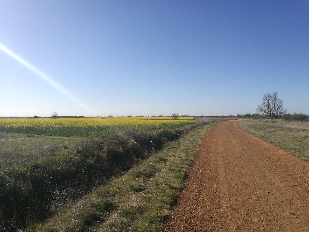 Il cammino di Santiago in Mountain Bike – Il racconto – dal 9° al 11° giorno